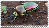 rainbow stag beetle stamp by hearthstoneadopts