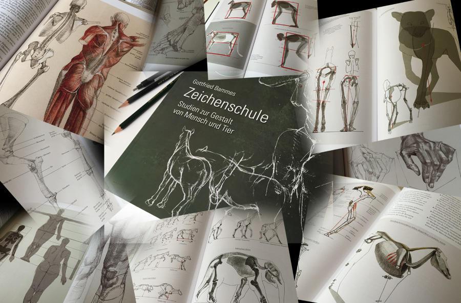 Anatomy-book-challenge by depingo