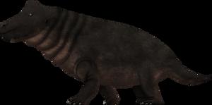 Styracocephalus platyrhynchus by SpinoInWonderland