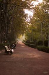 Vpark by PhotoStellArt