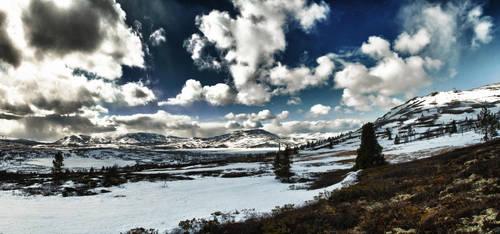 Svartfjellet HDR Panorama by scwl