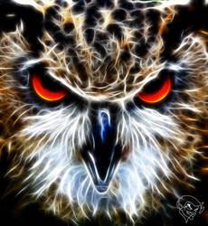 Great Horned Owl by bastler