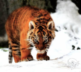 tiger cub II by bastler