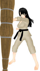 Martial arts pose illustration - KARATE (3) by Leomimus
