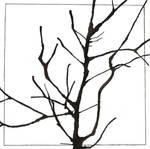 Tree branch by DameNiSuru