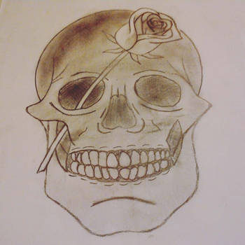 Skull with rose by artswallower
