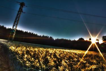 cornfield hdr by artfulRooms
