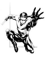 Nightwing SOTD by RobertAtkins
