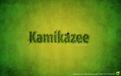 K4m1kazee Art by K4m1kazee