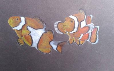 Clownfish W.I.P by Kitten-Draws