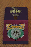 HollyHead Harpies Pin by Prue126