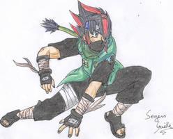 Ninja Seto by Seto01