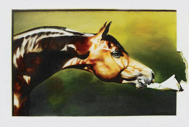 Horse Paint by CaldeiraSP
