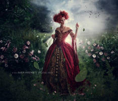 In my field by sara-hel