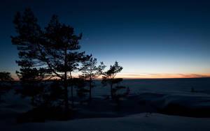 Winter Dusk by Smattila