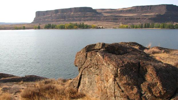 River Rock Perch by FoxStox