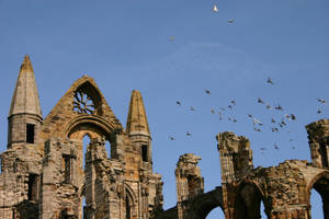 Whitby Abbey Ruins 8 by FoxStox