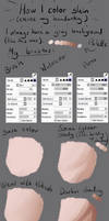 [Tutorial] Painting Skin in Paint Tool Sai by Astragami-sama