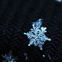 Little Snowflake II. by Kara-a