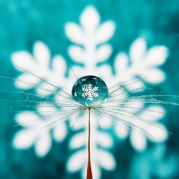 First Snow by Kara-a