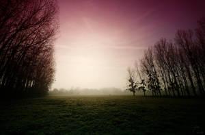 Daylight by k-simir