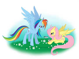 My little Pony - YAY by Shadow-of-Destiny