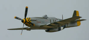 P51 JANIE  fly passed 3 by Sceptre63