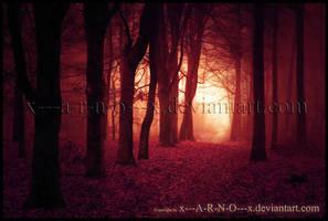 Dragon Forest by x---A-R-N-O---x