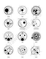 Circular Gallifreyan Part 2 by Nellufy