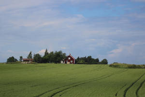 Swedish countryside by reaktionista