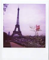 Pink Eiffel.. by Wahiba