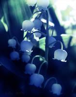 Soft Shades of Blue by Callu