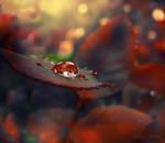 Bloody Wish by Callu