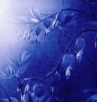 Tones of Blue by Callu