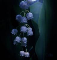 Hidden I by Callu