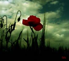 Green Sky by Callu
