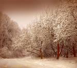 Winter Tunes by Callu