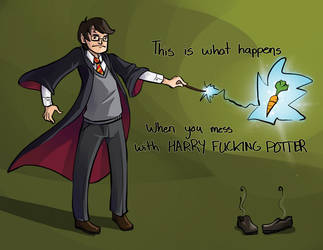 Don't mess with Potter by the-frizz