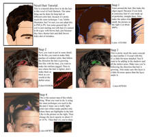 Vexel Hair Tutorial by 0Angelica0