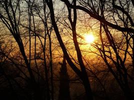 Golden Sky by eugeal