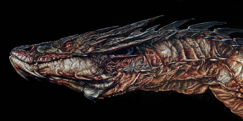 Smaug Painted Portrait by benke33