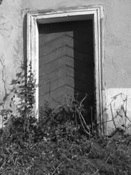 Door by Proinfo
