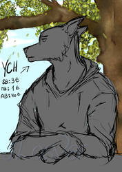 YCH CLOSED by ILosver