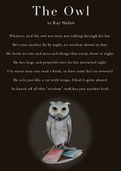 The Owl by pickled-punk