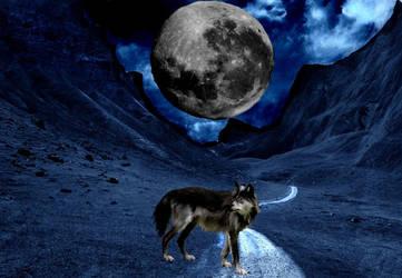 Wolf Manipulation Layout by adlex