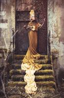 golden gate by AgnieszkaOsipa