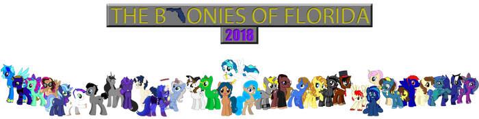 The Bronies of Florida 2018 by mibevan