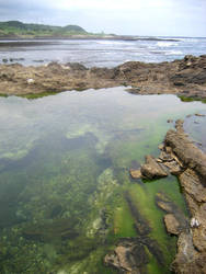 Yakushima - Tidal Pools by texantransplanted