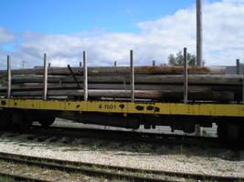 Log carrier by steward
