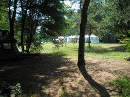 Maypole Field by steward